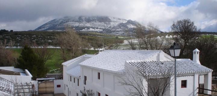 exterior nieve